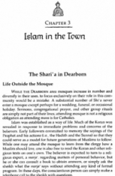 Islam in the Town